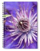 Pretty Purple Clematis Spiral Notebook
