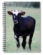 Pretty Young Thing Spiral Notebook