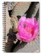 Prickly Pear Cactus Fertilized By Honey Bee Spiral Notebook