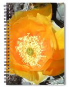 Prickly Pear Cactus Flower Spiral Notebook