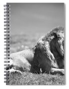 Pride In Black And White Spiral Notebook