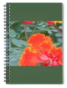 Pride On Fire Spiral Notebook