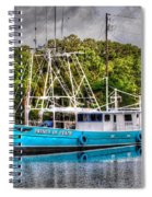 Prince Of Peace Side View Spiral Notebook