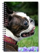 Princess Outdoors Spiral Notebook