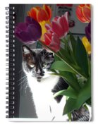 Princess The Cat And Tulips Spiral Notebook