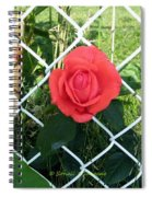 Princesse Rose Spiral Notebook
