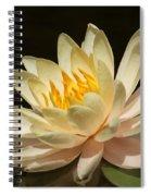 Pristine Water Lily Spiral Notebook