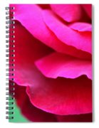 Profile Of A Rose Spiral Notebook