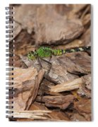 Profile Of Green Dragonfly Spiral Notebook