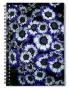 Profuse  Spiral Notebook