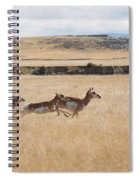 Pronghorn Antelopes On The Run Spiral Notebook