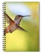Proud Hummingbird Spiral Notebook