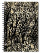 Pseudo Reflection  Spiral Notebook