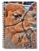 psssst   Over Here Bud Spiral Notebook