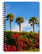 Pt. Dume Palms Spiral Notebook
