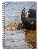 Public Bathing Spiral Notebook