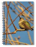 Pudge 2 Spiral Notebook