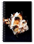 Puff Fish Seashell Spiral Notebook