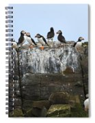 Puffins On A Cliff Edge Spiral Notebook