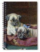 Pug Puppies In A Basket Spiral Notebook
