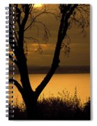 Pugent Sound Silhouetted Tree Spiral Notebook