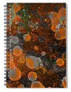 Pumpkin Abstract Spiral Notebook