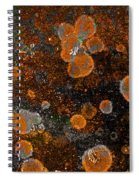 Pumpkin Abstract Square Spiral Notebook