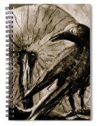Pumpkin And Crow Spiral Notebook