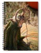 Pumpkin Curling Ribbon Spiral Notebook