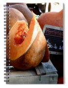 Pumpkin For Sale Spiral Notebook