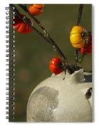 Pumpkin On A Stick In An Old Primitive Moonshine Jug Spiral Notebook