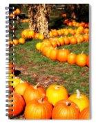 Pumpkin Patch Path Spiral Notebook