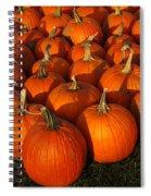 Pumpkin Pie Anyone Spiral Notebook