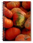 Pumpkin Pie Spiral Notebook