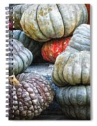 Pumpkin Pile II Spiral Notebook
