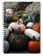 Pumpkin Piles Spiral Notebook