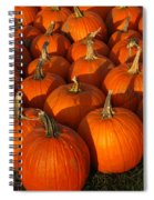 Pumpkin Strike Spiral Notebook