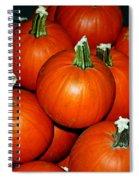 Pumpkins For Sale Spiral Notebook