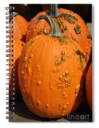 Pumpkinville Spiral Notebook