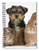 Pup, Guinea Pig And Rabbit Spiral Notebook