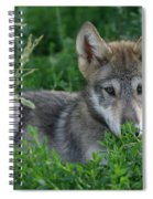 Pup In The Grass Spiral Notebook
