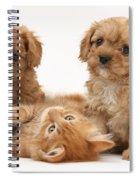 Puppies And Kitten Spiral Notebook