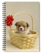 Puppy In A Basket Spiral Notebook