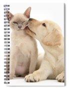 Puppy Licking Cat Spiral Notebook