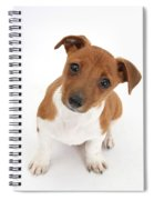 Puppy Looking Up Spiral Notebook
