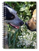 Puppy Love Spiral Notebook