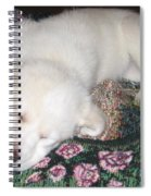 Puppy Nap Spiral Notebook