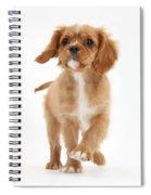 Puppy Trotting Foward Spiral Notebook