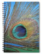 Purdy As A Peacock Spiral Notebook