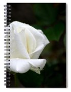 Pure As Snow Spiral Notebook
